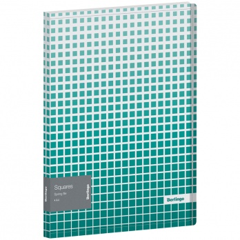 "Папка-скоросш. пласт. Berlingo ""Squares"", 600мкм, с внутр. карманом FS4_17053"